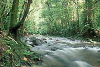 Malaysia, Borneo, Sarawak, Lanjak-Entimau Wildlife Sanctuary
