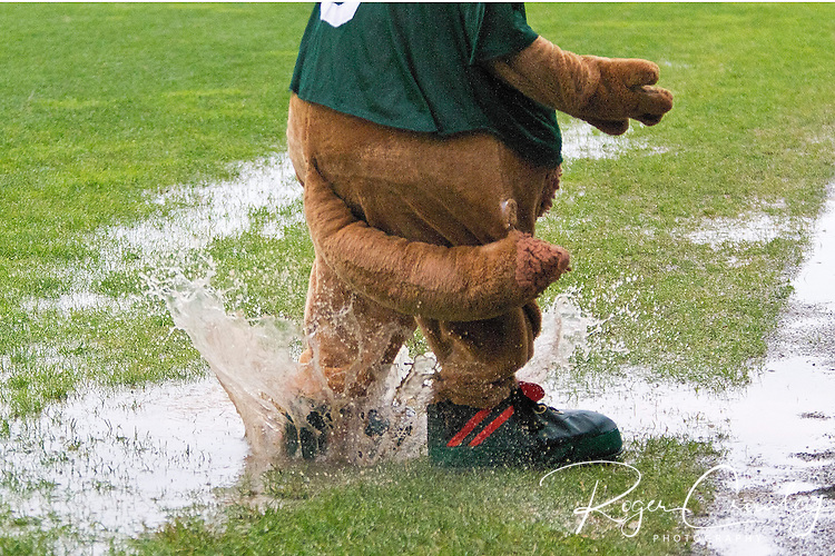 Vermont outlasted the North Adams SteepleCats and a two hour twenty-four minute rain delay in a 17-4 NECBL victory on July 6 at Montpelier Recreation Field.