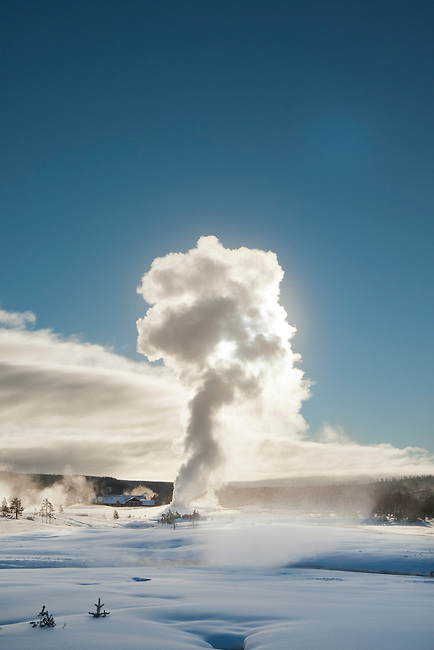 Old Faithful erupts on a winter day in 2009.  Old Faithful is the most famous geyser in Yellowstone National Park Wyoming, USA, shown here with the sun behind the steam.  Photo By Gus Curtis.