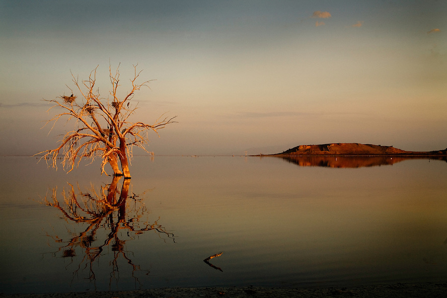 July 31, 2007_Calipatria, CA - A view of the Salton Sea at sunrise near Sonny Bono State Park.