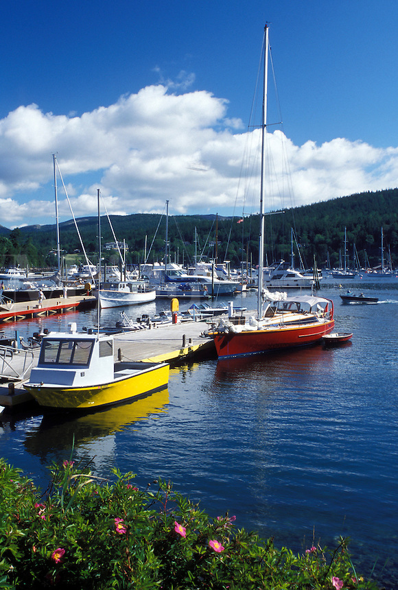 Northeast Harbor, Mount Desert Island, ME, Maine, Boats docked at the marina in Northeast Harbor on the Atlantic Ocean.