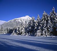 Alaskan winter landscape of snow atop a frozen lake with snowy trees and a mountain peak. Alaska.