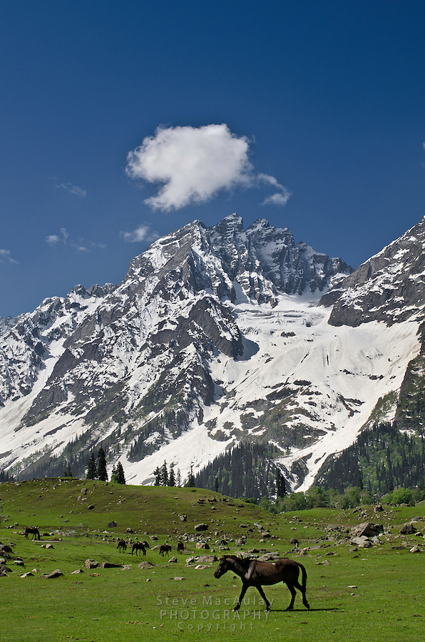 The spectacular alpine skyline of the Himalayan Mountains above Sonamarg, along the Srinagar to Leh road, Kashmir, India