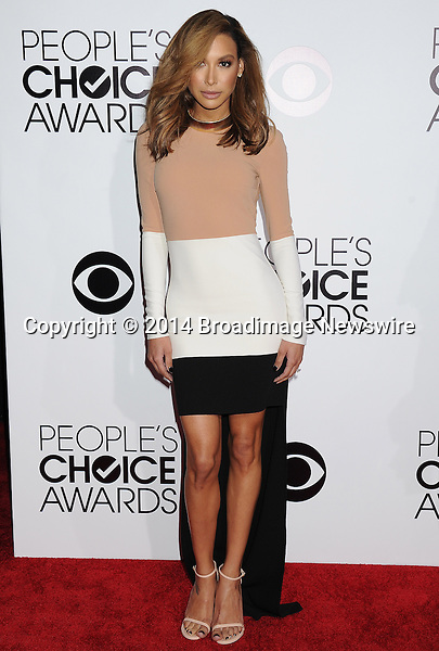 Pictured: Naya Rivera<br /> Mandatory Credit &copy; Gilbert Flores /Broadimage<br /> 2014 People's Choice Awards <br /> <br /> 1/8/14, Los Angeles, California, United States of America<br /> Reference: 010814_GFLA_BDG_314<br /> <br /> Broadimage Newswire<br /> Los Angeles 1+  (310) 301-1027<br /> New York      1+  (646) 827-9134<br /> sales@broadimage.com<br /> http://www.broadimage.com