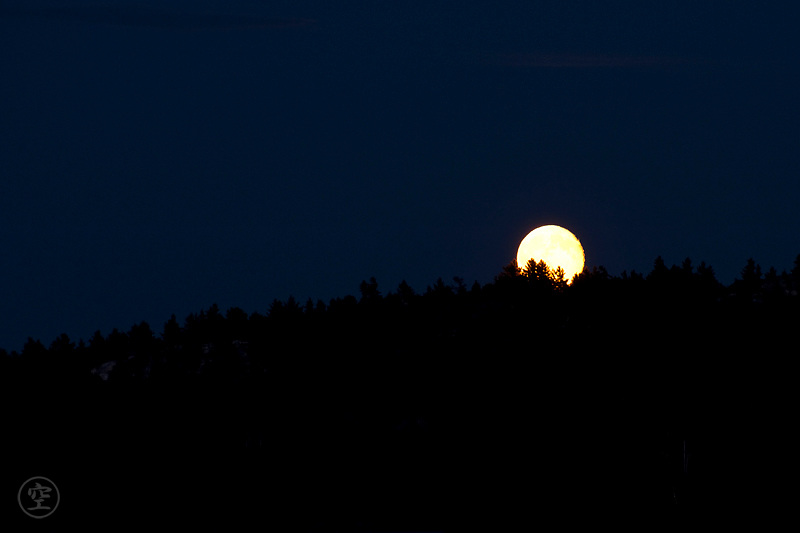 A full moon rises above the pines on the shores of David Lake, Killarney Provincial Park