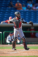 Louisville Cardinals catcher Zeke Pinkham (11) during a game against the Ball State Cardinals on February 19, 2017 at Spectrum Field in Clearwater, Florida.  Louisville defeated Ball State 10-4.  (Mike Janes/Four Seam Images)