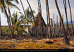 Hale o Keawe Heaiu, thatched Royal Mausoleum and Ki'i Guardians, Pu'uhonua o Honaunau, Place of Refuge, Pu'uhonua o Honaunau National Historical Park, South Kona Coast, Big Island of Hawaii