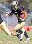 Palos Verdes, CA 09/16/16 - Jeffrey Jimena (Peninsula #6) in action during the Torrance - Palos Verdes Peninsula CIF Varsity football game.