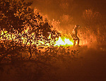 August 19, 2001 Coulterville, California  -- Creek Fire –  Firefighters set big backfire along Priest-Coulterville Road. The Creek Fire burned 11,500 acres between Highway 49 and Priest-Coulterville Road a few miles north of Coulterville, California.