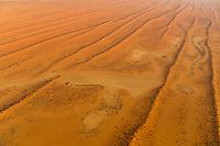Namibia, Afrika, Landschaft, Wüste, Kalahari, Luftbild, Luftaufnahme, Luftansicht, Namibia, Africa, Landscape, Desert, Kalahari, Aerial photo, Aerial view, Sandstorm, weather, meteorology, Aerial photograph,