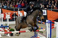 ZUIDBROEK - Paardensport, ICCH Zuidbroek, springen internationaal Grote Prijs , 05-01-2019, Chantal Regter met Eamelusina R57