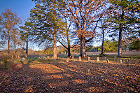 The Cherry Grove Cemetery near The Parker-Hickman Homestead along the Buffalo National River in Arkansas is listed on the National Register of Historic Places.