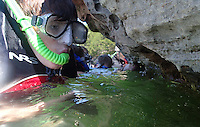NWA Democrat-Gazette/FLIP PUTTHOFF<br /> A LOOK DOWN UNDER<br /> Andrew Maurras, 11, (cq) examines rock formations Wednesday August 12 2015 during a snorkeling tour offered by Hobbs State Park-Conservation Area. Snorkelers traveled in the park's pontoon boat to a scenic cove in the Rocky Branch area of Beaver Lake and explored along a rocky shoreline. The park's next snorkeling trip is August 19 from 1 to 4 p.m. The $20 cost includes use of a snorkel, mask and life jacket. Call the Hobbs visitor center, 479-789-5000 to register.