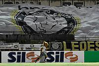 SOBRADINHO, DF, 06.02.2019 – SOBRADINHO/DF-AMERICA/RN – O mascote do Sobradinho antes da partida contra o América, válida pela Copa do Brasil, na noite desta quarta-feira, 06, no Estádio Augustinho Lima em Sobradinho, cidade satélite de Brasília. . (Foto: Ricardo Botelho/Brazil Photo Press/Folhapress)