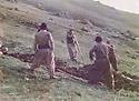 Iraq 1984 .Peshmergas planting vegetables in Surien.Irak 1984 .Peshmergas plantant des legumes dans la montagne de Surien