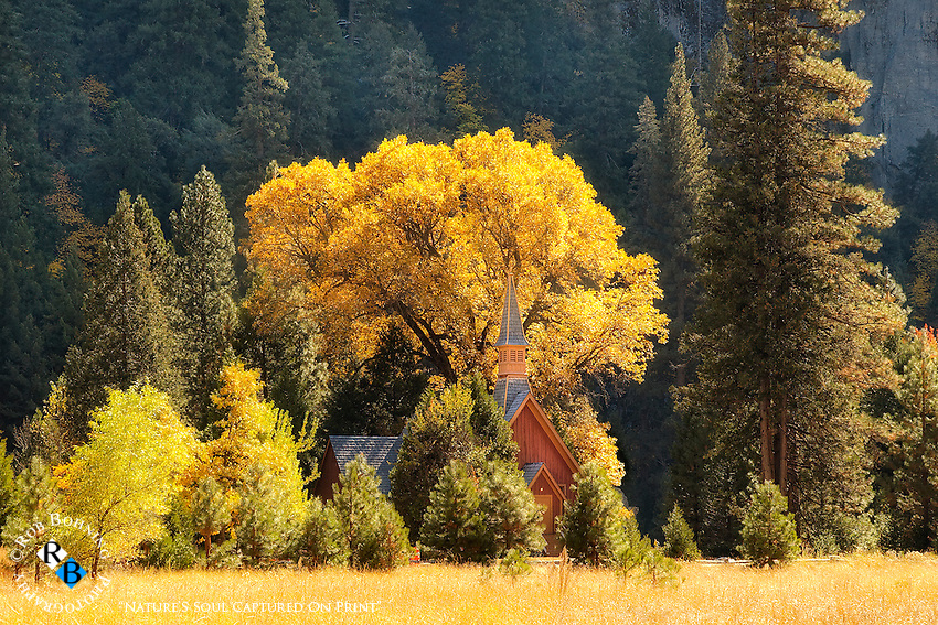 A very popular landmark in the park, the Yosemite Chapel sits peacefully adorned in its autumn glory