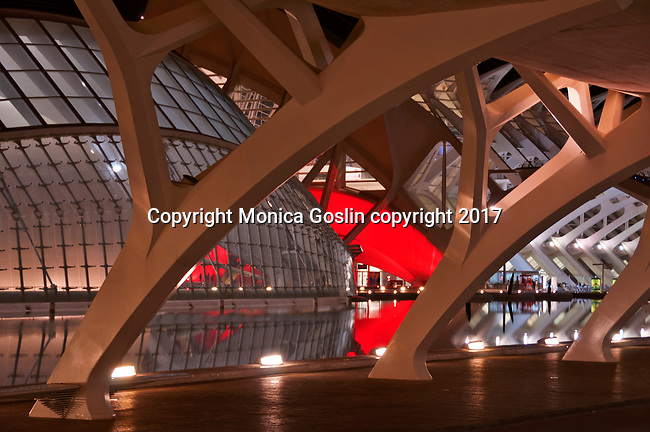 City of Arts and Sciences complex at night, the complex was built in the former riverbed of Turia river; designed by Sanitago Calatrava