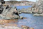 SEASCAPE AROUND NEWFOUNDLAND'S COASTLINE