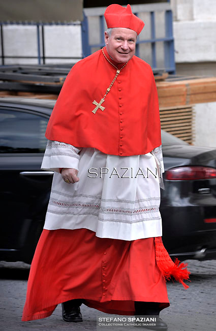 cardinal Christoph Schoenborn . Pope Francis,  at St. Peter's Basilica in Vatican.during the mass New Cardinals on February 15 2015