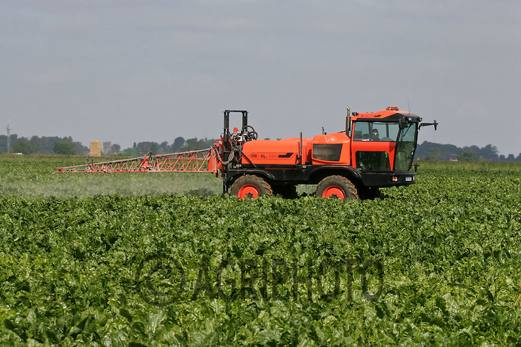 Self Propelled crop sprayer working in a field of sugar beet.