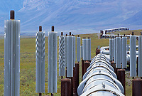 Trans Alaska oil pipeline in Atigun Canyon, Brooks Range, Alaska
