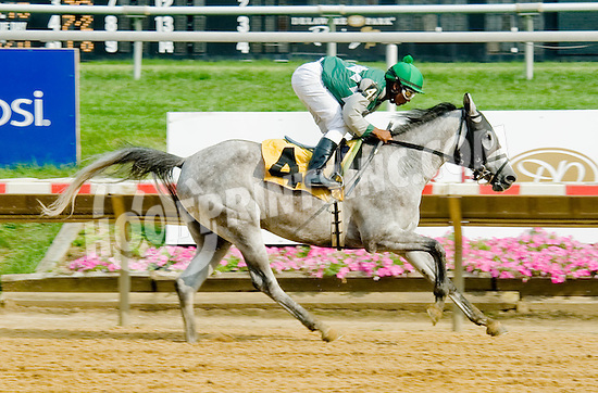 Grate Fire winning at Delaware Park on 8/1/12