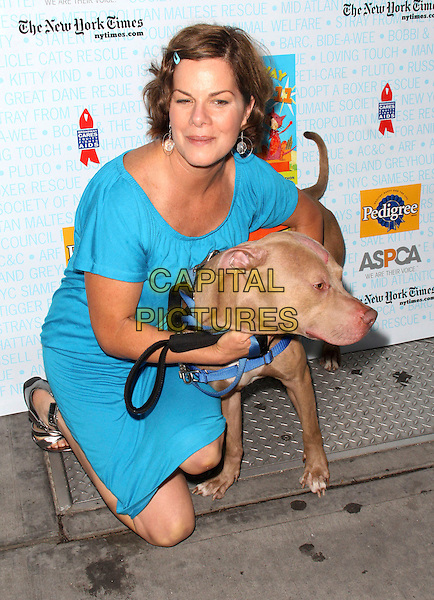 "MARCIA GAY HARDEN .A ""Pawpular"" Star Studded dog and cat adopt-a-thon ""Broadway Barks"", New York, NY, USA, 11th July 2009..full length pet dog kneeling crouching down blue dress hair clip .CAP/ADM/PZ.©Paul Zimmerman/Admedia/Capital Pictures"
