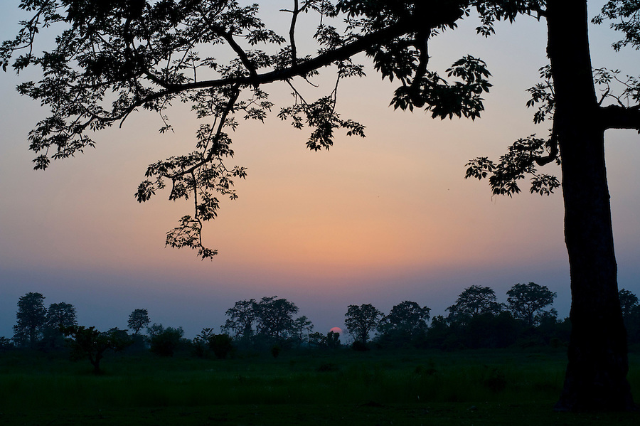 The sun setting over Royal Bardia National Park. WWF has worked with local communities in the surrounding buffer zone area to create more sustainable livelehoods, reducing forest degradation and human/wildlife conflict.  Bardia district, Western Terai, Nepal.