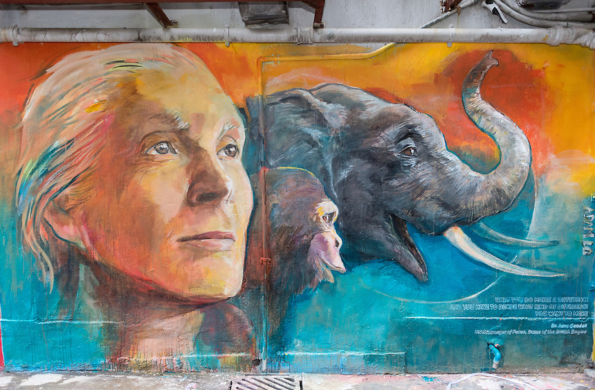 Wall painting by local artist Adam Lo of Dame Dr Jane Goodall.<br /> &quot;Walls of Change&quot; street art in Hong Kong painted ahead of the The &ldquo;Hope for Wildlife&rdquo; Gala Dinner to raise awareness for the plight of endangered animals the world over.<br /> Sai Yin Pun Hong Kong<br /> 10th November 2016. Photo by Jayne Russell