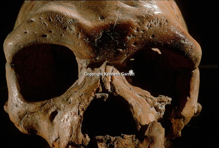 Human Evolution; China; Dali; Early Modern Human;
