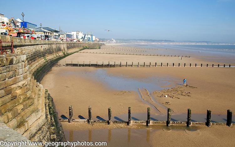 Man Digging For Worms On Sandy Beach Bridlington Yorkshire
