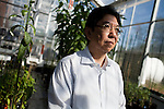 October 12, 2007, Raleigh, NC.. Professor Vincent Chiang, director of the project, in the greenhouse..Greenhouses at the Department of Forest Biotechnology at North Carolina State University are being used to grow trees with lower lignin levels to be better used for future bio-fuel technologies.