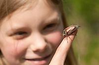 Gemeiner Maikäfer, Feld-Maikäfer, Feldmaikäfer, Melolontha melolontha, auf dem Finger eines Mädchens, Kind, maybeetle, common cockchafer, maybug