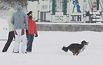 West Seattle residents play with their dogs after a snowstorm hit the Seattle area early morning dumping at least 4 to six inches and will likely continue into the afternoon it a tough commute for drivers  in Seattle on January 18, 2012. ©2012. Jim Bryant Photo. All Rights reserved.