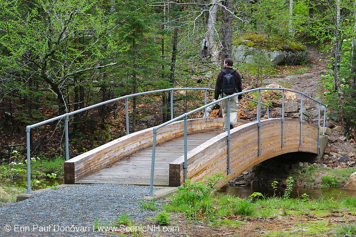 A male hiker at the Robertson bridge, which crosses the Saco River, along the Webster Cliff Trail (Appalachian Trail) in the New Hampshire White Mountains. This bridge, built in 2008, is dedicated to the memory of Albert Robertson and his wife, Priscilla. Both volunteered their time to the AMC Four Thousand Footer Club, and Albert was one of the founding members.