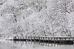 Snow Covered Trees, Path And Wooden Deck Along The Lake Shore During Winter In The Park, Sharon Woods, Southwestern Ohio, USA