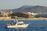 Sportfishing off Playa El Medano, Cabo San Lucas