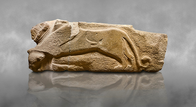 Alaca Hoyuk - Hittite lion sculptures corner Stone. . Andesite. Alacahoyuk, 1399 - 1301 B.C. Anatolian Civilisations Museum, Ankara, Turkey.<br /> <br /> Corner stone decorated by lion, bull and winged sun disk. It was discovered at the right side of the Alacahoyuk sphinx door. The lion puts his front legs on a small bull. There is a Hittite winged sun disk on the abdomen of the lion, which can be seen from a lower location. The position of the sun course indicates that the stone is situated in a high place. <br /> <br /> Against a grey art background.