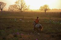 Vaqueiros trabalham com gado em fazenda no arquipélago do Marajó.<br /> Cachoeira do Arari; Pará; Brasil<br /> Foto ©Armando Soares