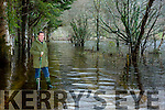Frank McMahon the recently tarmacadamed road are still covered with fllood waters in Muckross House gardens on Tuesday