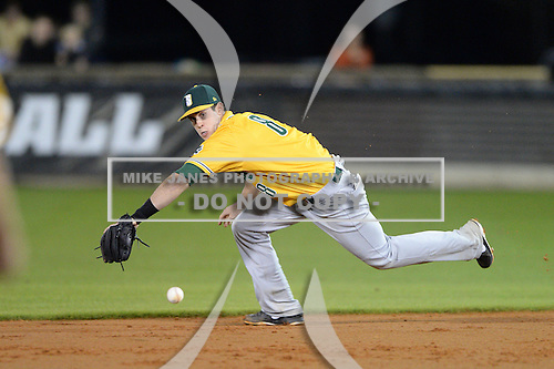 Siena Saints second baseman Mike Allen (8) fields a grounder during the season opening game against the Central Florida Knights at Jay Bergman Field on February 14, 2014 in Orlando, Florida.  UCF defeated Siena 8-1.  (Copyright Mike Janes Photography)