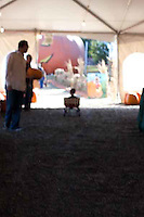 Families from Oakland's Melrose Leadership Academy visit a pumpkin patch near Pleasanton, California.