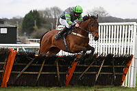 Darkest Day ridden by Jamie Moore clear the last in The Extech Cloud-Humanising It Handicap Hurdle during Horse Racing at Plumpton Racecourse on 10th February 2020