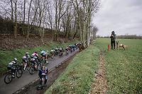 Omloop van het Hageland 2019<br /> 133km from Tienen to Tielt - Winge (BEL)<br /> <br /> ©JoJo Harper for Kramon