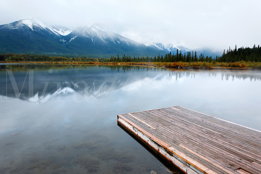 Wood dock floating on Vermillion Lakes on a still morning, Banff National Park, Canadian Rockies, Alberta, Canada