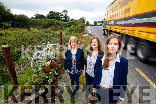Siobhan Dwyer with a Ghost Bicycle, memorial near Farranfore, dedicated to the memory of her late partner Killarney Cyclist Ed Duggan who was killed in 2015 on the road. Also in photo are Siobhan's Mother Maud Dwyer and Aunt Catherine Lyons.