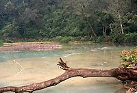 Indonesia, Java island:Kawa Ijen Crater Lake.<br /> Indonesia; Giava: lago Kawa Ijen