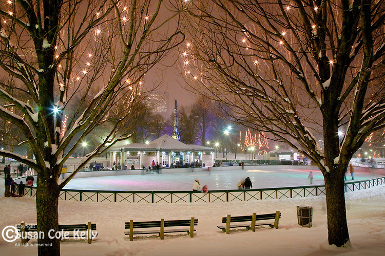 Boston new year skate susan cole kelly photography christmas lights at the frog pond skating rink in boston common boston ma sciox Images