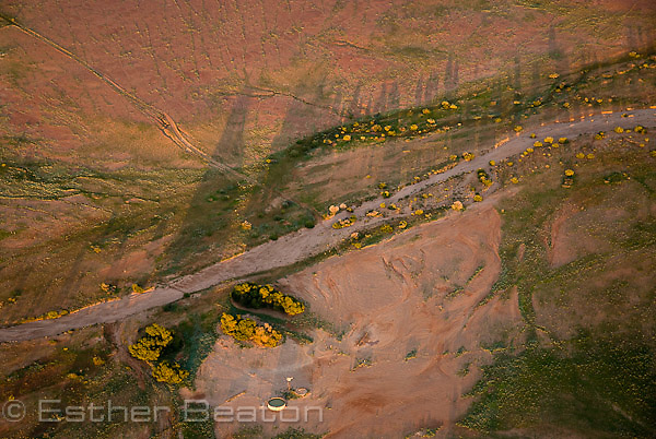 New green growth lines water channels into Welcome Creek. South Lake Eyre and Eyre Basin, South Australia