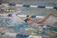 NWA Democrat-Gazette/J.T. WAMPLER Image from the 7 -West District swim meet in Bentonville Wednesday Feb. 15, 2017.